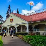 The Dole Platation, one of the things that you can do on Hawaii family vacations.