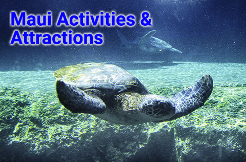 Hawaii Activities & Attractions on Maui - B. Inouye
