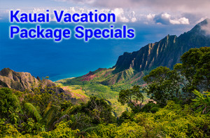 Kauai air and hotel packages are from $277 to $782 per person double, occupancy.