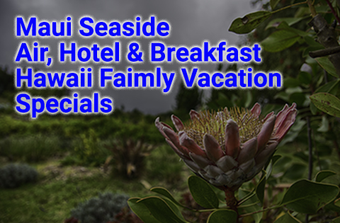 Maui Seaside Air, Hotel and Breakfast Hawaii Family Vacation Specials 480x315 - B. Inouye