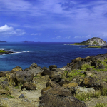 View from Makapu'u Point.