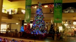 Christmas tree - Honolulu
