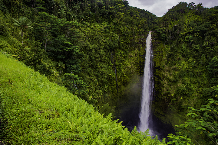One of the scenic Hawaiian waterfalls, Akaka Falls