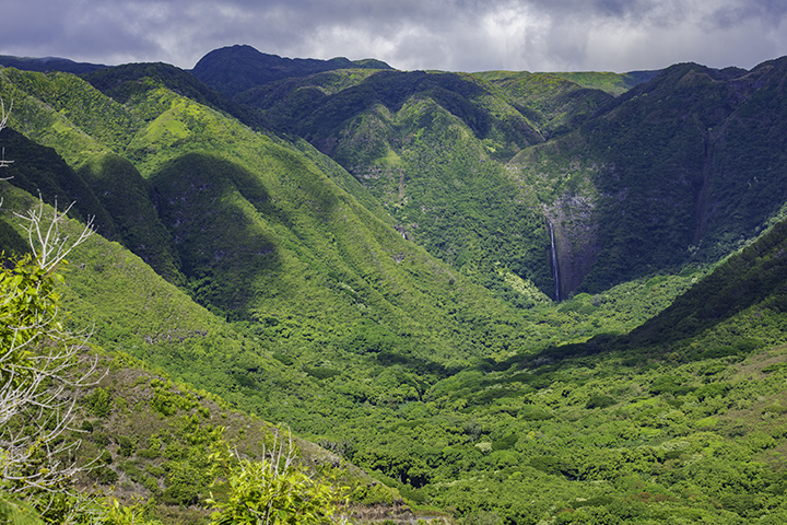 One of the secluded Hawaiian waterfalls.