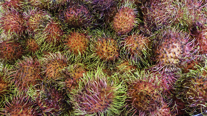 Rambutan fruit at farmers markets on Kauai