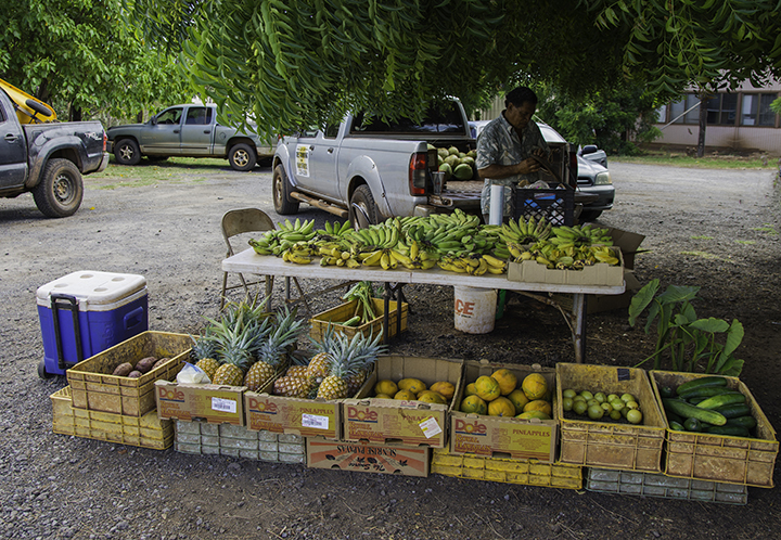 Farmers markets on Molokai.