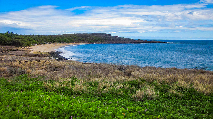 A famous beach on the island of Lanai.