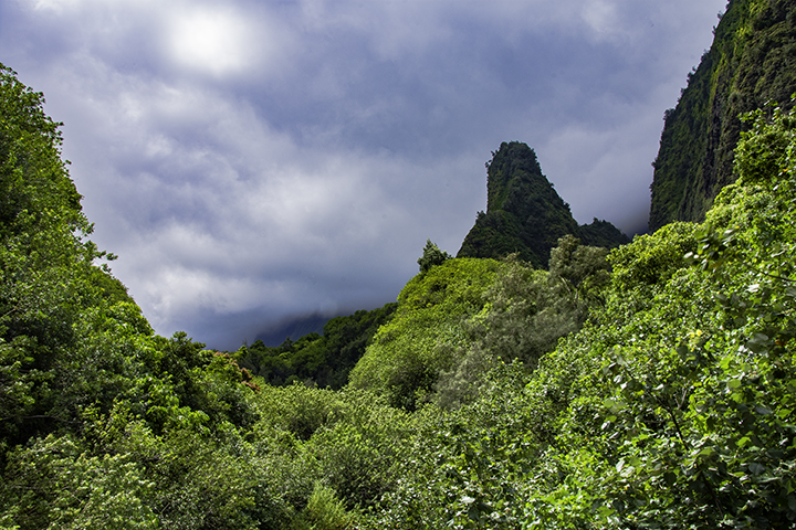 Visiting Iao Valley is one of the things to do on Maui.