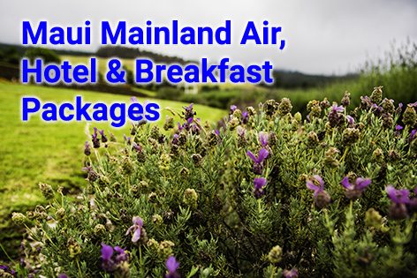 Maui Mainland Air, Hotel & Packages 480x315 - B. Inouye