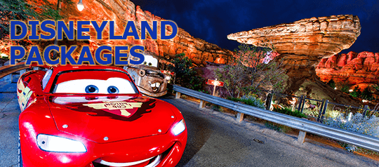Visit the Happiest Place on Earth with your family with our air and hotel packages.
